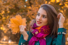Young girl in autumn Park looks to the side and holding a orange leaves. Young beautiful girl in autumn Park looks to the side and holding a orange leaves stock image