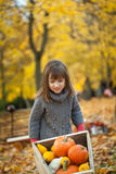 Young girl in autumn park with wheelbarrow Stock Images