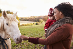 Young Girl On Autumn Walk With Mother Stroking Horse Royalty Free Stock Photos