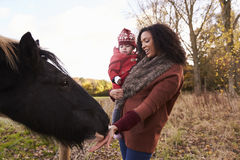 Young Girl On Autumn Walk With Mother Stroking Horse Royalty Free Stock Photo