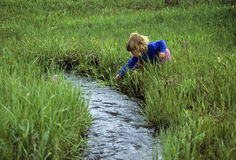 Young girl by a babbling brook Stock Images