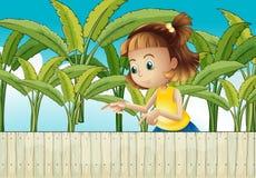 A young girl at the banana plantation Royalty Free Stock Photography