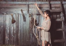 Young girl in the barn royalty free stock image