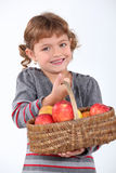 Young girl with a basket of apples. A young girl with a basket of apples Stock Images