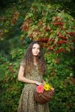 Young girl with a basket of flowers on a background of viburnum. royalty free stock image