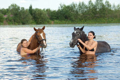 Young girl bathe horse Stock Photography