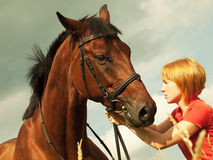 Young  girl with bay  horse in field Stock Images
