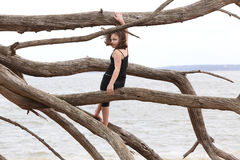 Young girl at the beach in driftwood branches Stock Photography