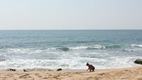 Young girl at beach stock video footage