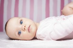 Beautiful infant portrait on colorful background. royalty free stock image