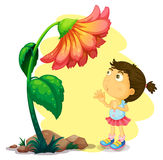 A young girl below the giant flower Stock Images
