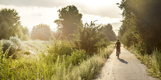 Young girl on bike. Photo taken outdoor in summer stock image