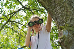 Young girl with binoculars in a tree Stock Photography