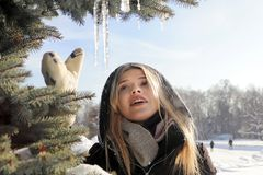 A young girl in a black jacket touches icicles Stock Photography