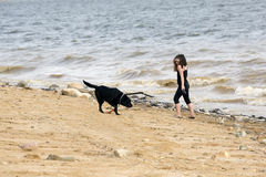 Young girl and a black lab walking on the beach Royalty Free Stock Photos