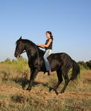 Young girl and black stallion. Teenager and her black stallion in grass, sexy young woman Royalty Free Stock Photo