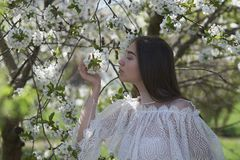 Young girl in blooming trees royalty free stock photography
