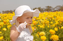 Young Girl Blowing Bubbles royalty free stock image