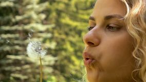 Young girl blowing dandelion in slow motion. Close up stock video footage
