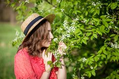 Young girl blowing nose and sneezing in tissue in front of blooming tree. Seasonal allergens affecting people. Beautiful lady has. Rhinitis stock photos