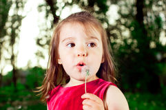 Young girl blowing seeds of a dandelion flower Stock Image