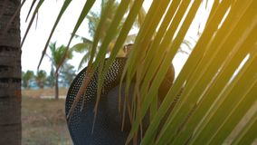 Young girl in blue hat and glasses looks at tropical palms. Close Up Shot. stock video footage
