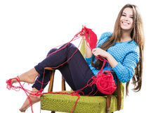 Young girl in a blue sweater sits on a chair with a red ball of yarn and knitting a scarf and Spitz. Smiles. White background. Royalty Free Stock Images