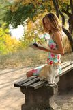 Young girl with a book and a cat Royalty Free Stock Photos