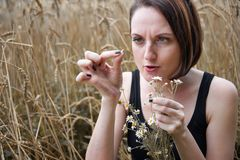 A young girl with a bouquet of flowers sitting near a wheat field. She picks off flower petals and wondering love or not love usin. G old folk legends and royalty free stock photo