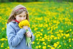 Young girl with bouquet of yellow flowers. Royalty Free Stock Photos