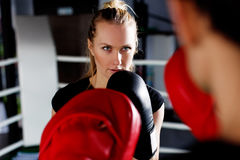 Young girl with boxing gloves Royalty Free Stock Image