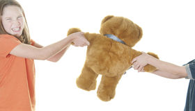 Young girl and boy fighting over bear Stock Image