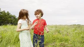 Young girl and boy looking flowers and plant at green meadow in village. Little sister and brother walking on stock video