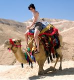 Young Girl Camel Dead Sea Israel royalty free stock photos