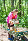 Young girl carries firewood from forest Royalty Free Stock Photography