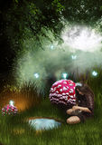 Young girl with cat in fantasy land. A young girl in fantasy land with big mushrooms and fairies Stock Photo