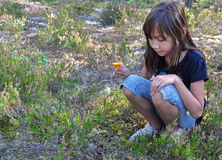 Young girl with chanterelle Stock Photo