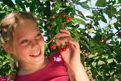 Young girl with cherry berries Stock Photos