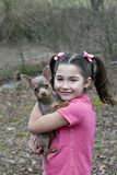 Young girl with Chihuahua Royalty Free Stock Photos