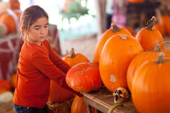 Young Girl Choosing A Pumpkin at the Carnival Royalty Free Stock Photos