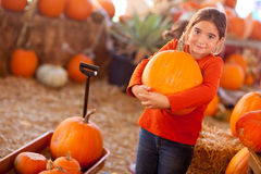 Young Girl Choosing A Pumpkin Stock Images