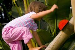 Young girl climbing Stock Image
