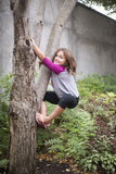 Young girl climbing tree Royalty Free Stock Images