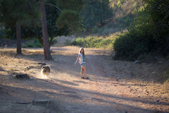 Young girl with collie dog walking in the forest. Stock Image