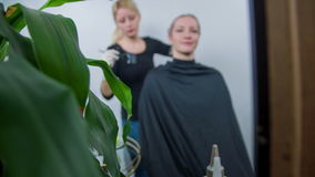 Young girl colouring the woman's head. Slow motion total RAW footage of a woman seating in the hair salon and young hair dresser is colouring her hair stock footage