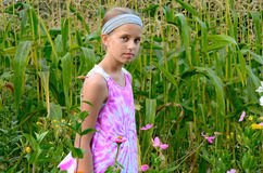 Young girl in a corn field Royalty Free Stock Images