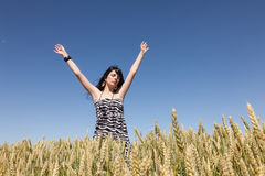 Young girl in a cornfield Stock Images