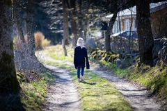 Young girl in the countryside royalty free stock photos