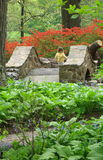 Young girl crossing a stone bridge. With azaleas in the background Royalty Free Stock Images