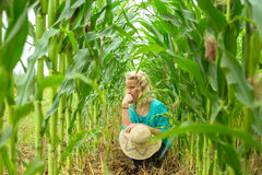 Young girl crouched corn field Royalty Free Stock Photo